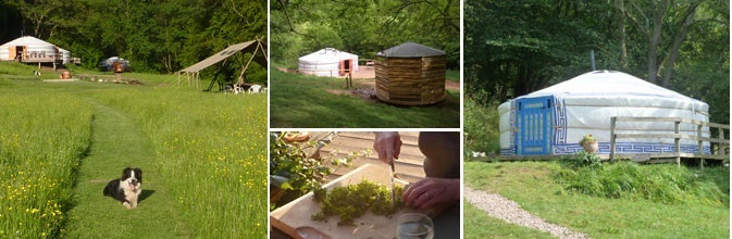 Glamping holidays in a yurt in the Wye Valley on the Wales England border